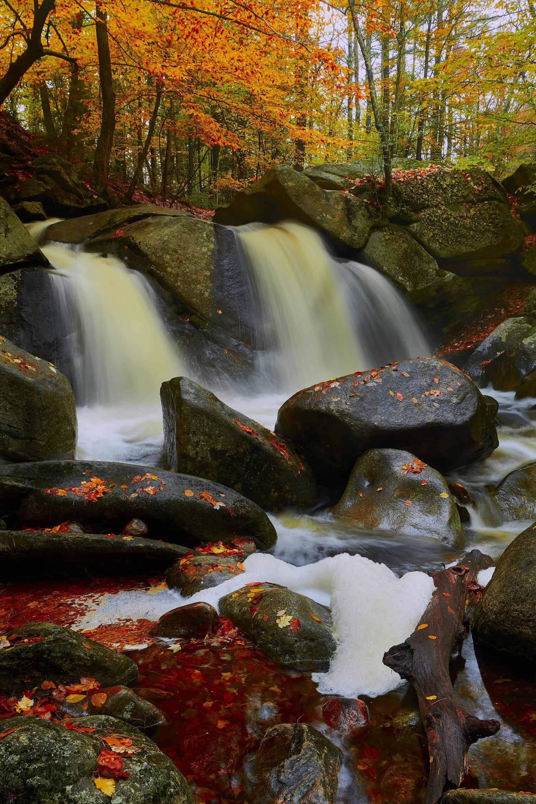 The Silent Stream