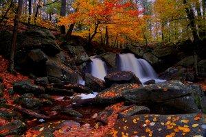 Flow of Color